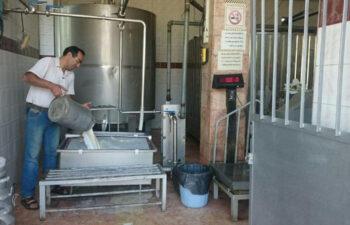 گزارشی از وضعیت کارگران در کارخانهی شیر و لبنیات در حومهی اصفهان