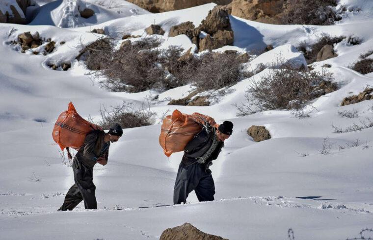 داستان کوتاه «دو رفیقِ کوهستان»